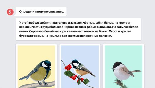 Пример задания по русскому языку для 4-го класса